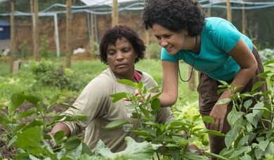 Danielle dos Santos Sanfins from AS-PTA advises Rosineia Suares in Parque Geneciano Luz / Brazil in the greenhouse of the cooperative Univerde. (Photo: Thomas Lohnes)