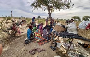 Mbororo Community, Chad