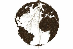 Tag des Bodens - World Soilday