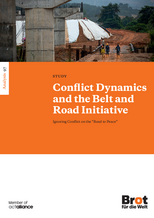 New Survey on Conflict Dynamics and the BRI