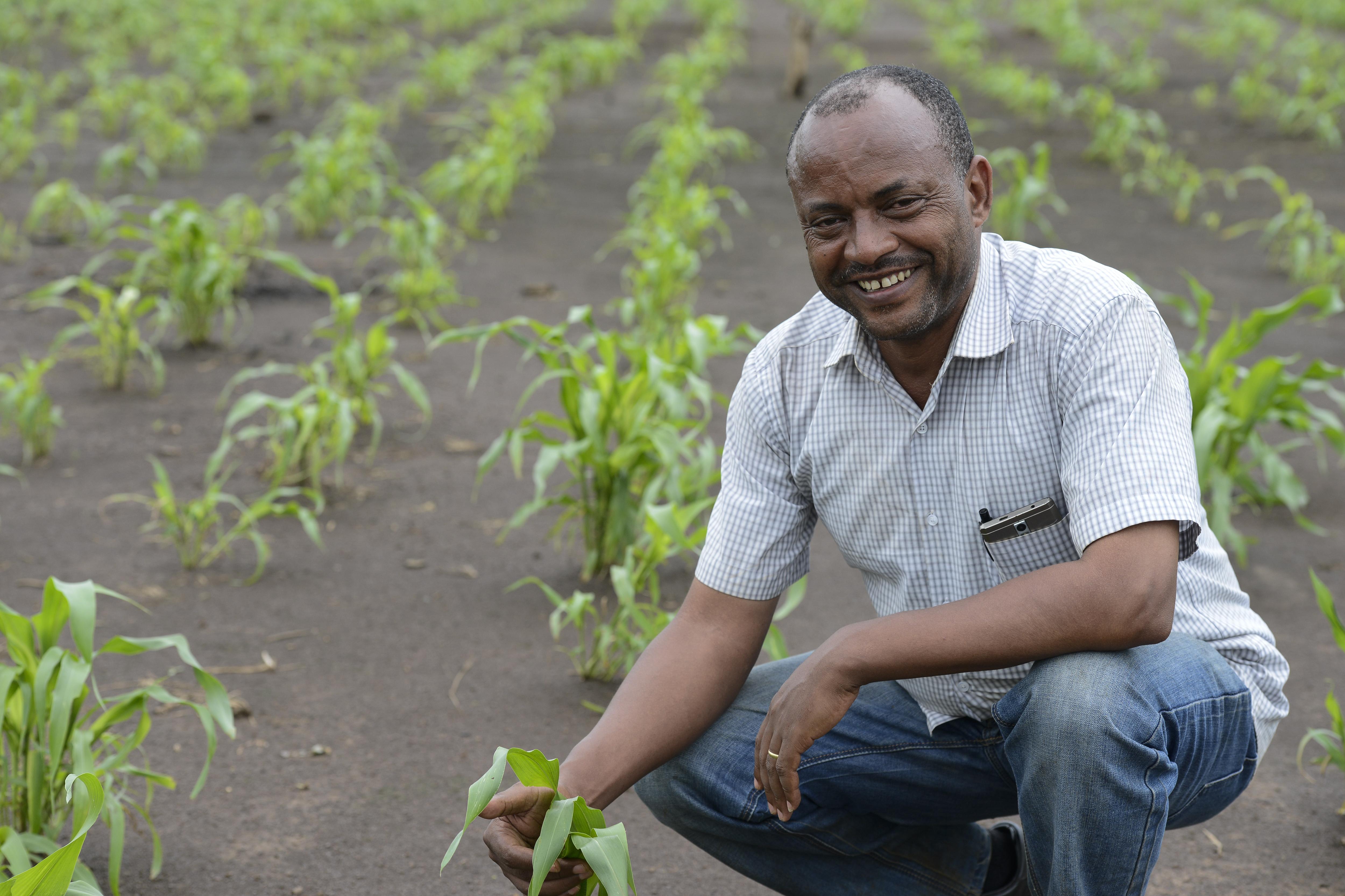 Bultum Oljira ist Program Officer für die Region Gambela in der Ethiopian Evangelical Church Mekane Yesus kniet in einem Feld.